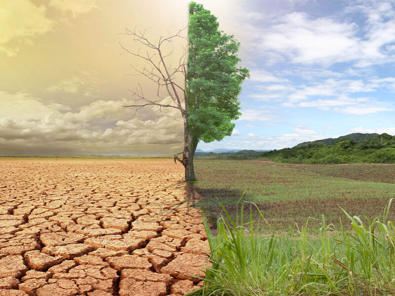 CVA could help to save the climate change in different ways.