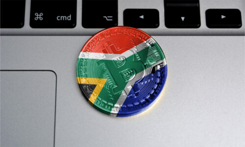 25% of South Africans Own Cryptocurrency With Average Value of Assets Held Below $70 CVAG